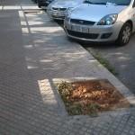 Carrer Mare Oviedo